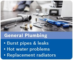 Plumbing Services Reigate